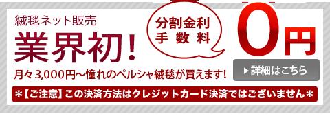業界初!分割金利手数料0円